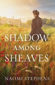 shadow-amonght-sheaves