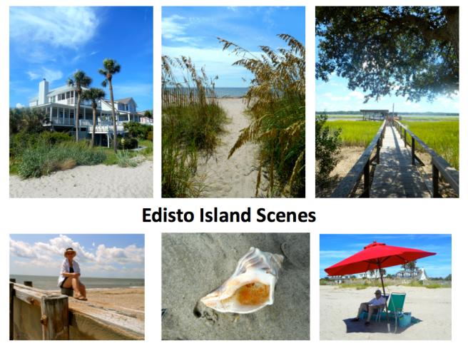edisto-scenes