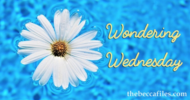 wondering-wednesday