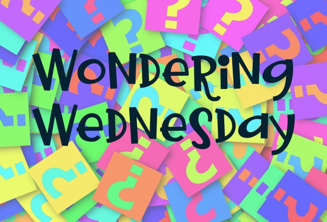 wondering-wednesday-2